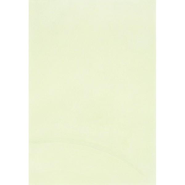 ALEXA Плитка Настенная светло-зелёная GNC 27,5х40